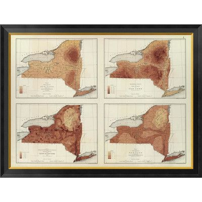 """Global Gallery 'New York: rainfall, population, elevation, temperature, 1895' by Henry Gannett Framed Graphic Art on Canvas Size: 26"""" H x 34"""" W x 1..."""