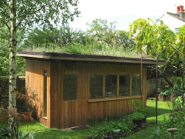 Artist Studio in Brighton, built by @organicroofs  Great use of space in nature.