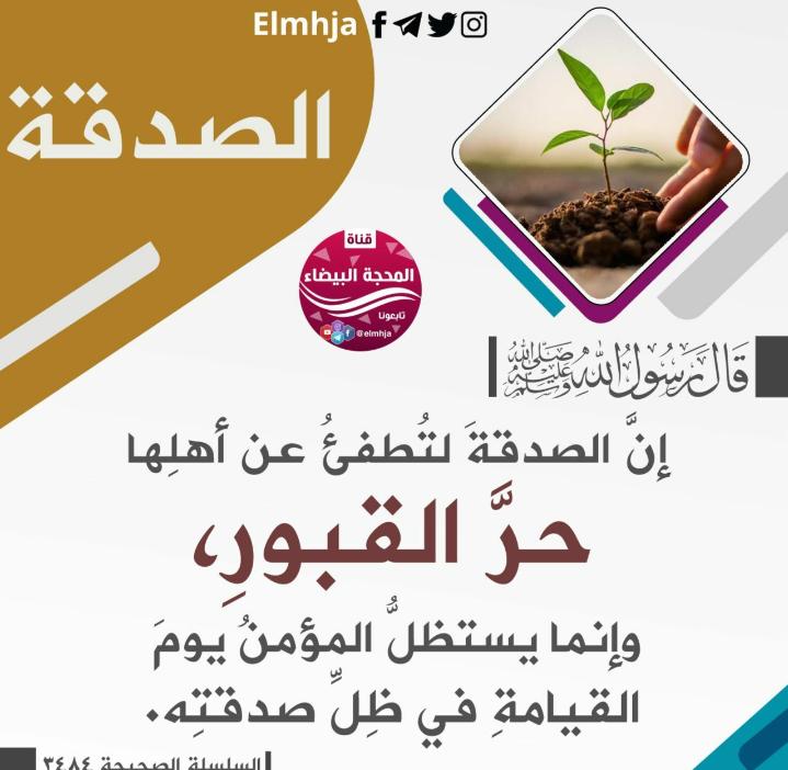 Pin By Desert Rose On الصدقة Words Wisdom Allah