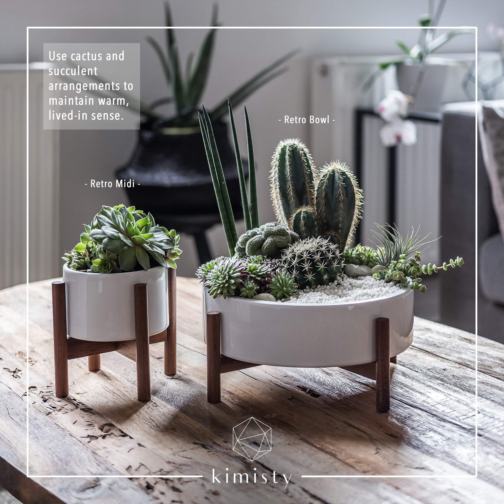 Mid Century Large Round Succulent Planter Bowl 10 Inch White Ceramic Pot With Wood Stand Plant Stands With Plant Decor Indoor House Plants Decor Plant Decor