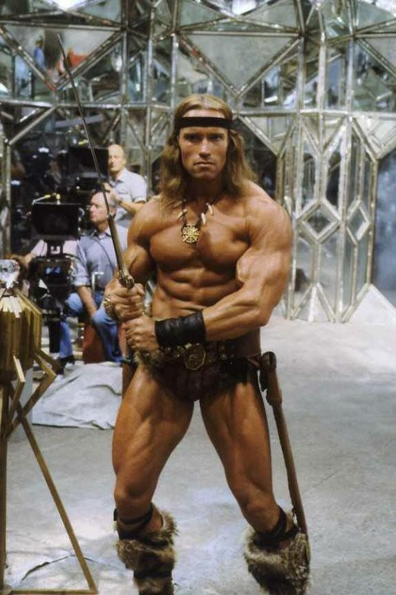Conan Arnoldschwarzenegger Fitness Arnold Schwarzenegger Movies Conan The Destroyer Arnold Movies