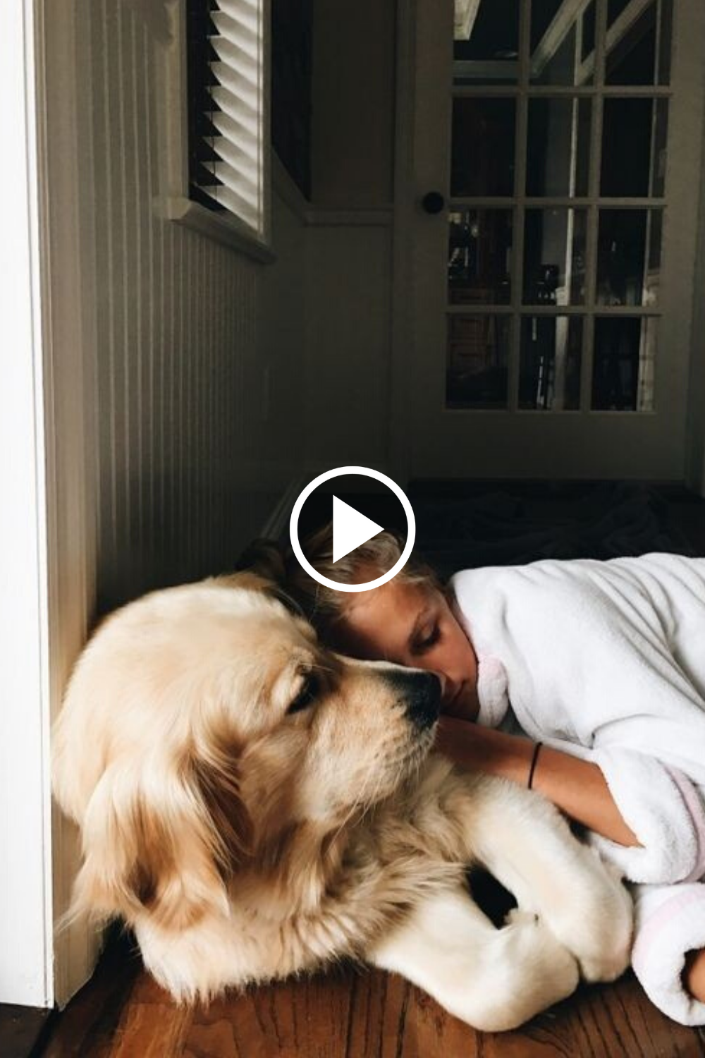 Adorable Babies Playing With Dogs And Cats Funny Babies Compilation Tiktok Youtube Video Instagram Dog Cat Cute F In 2020 White Cat Breeds Dog Cat Cute Animals