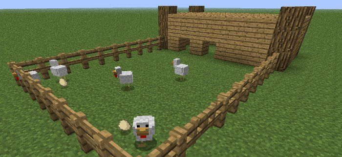 Learn how to create an efficient egg farm in minecraft  | cartoons