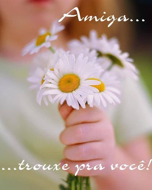 Resultado de imagem para flores para amiga querida