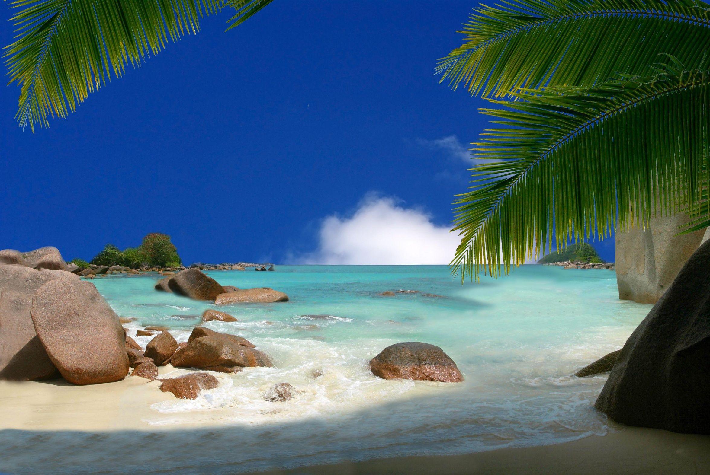 seychelles praslin ladigue mahe les seychelles un. Black Bedroom Furniture Sets. Home Design Ideas