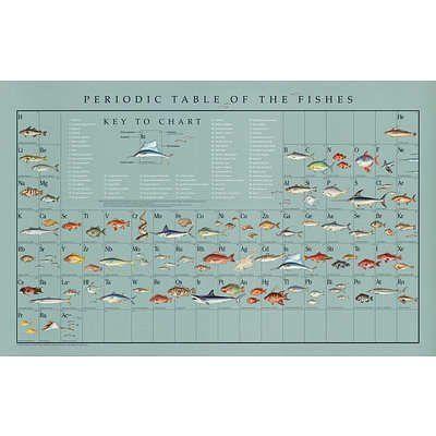 22x34) Naomi Weissman - Periodic Table of the Fishes Educational - new tabla periodica lenntech