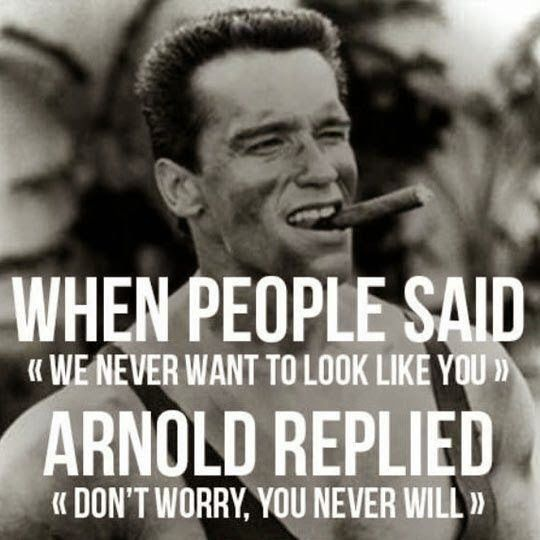 Arnold Schwarzenegger Quotes Amazing One Of Arnold Schwarzenegger's Most Famous Quotes  Famous Quotes 2017
