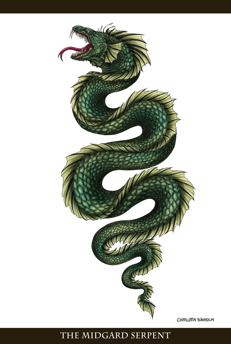 Image by Shutterstock Ouroboros Mystical Snake Dragon Men/'s Tee