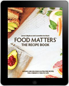 Food matters recipe e book healthy smoothies pinterest healthy food matters recipe e book forumfinder Images