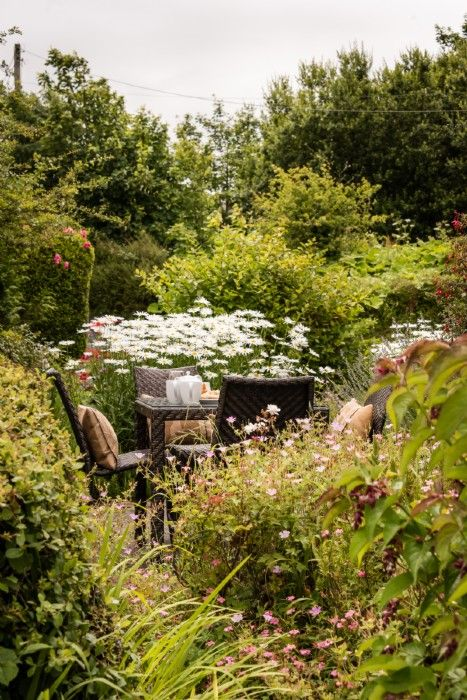 Spend afternoons amongst the flowers, bumblebees and butterflies