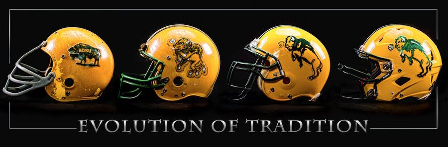 Ndsu Bison Tradition Helmets Canvas One Herd Ndsu Bison Ndsu Bison Football College Football Helmets