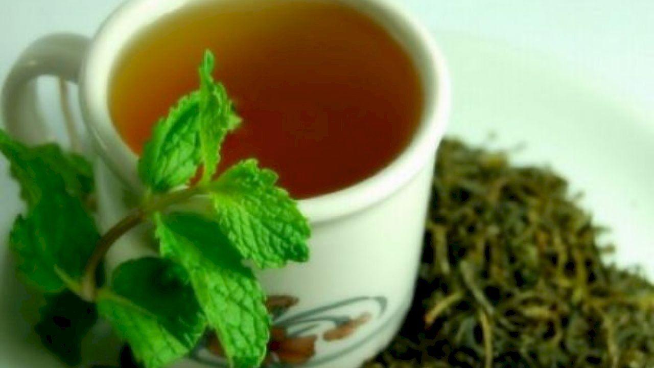 فوائد الشاي الأخضر للرجيم Green Tea Benefits Green Tea Diet Green Tea Diet Plan