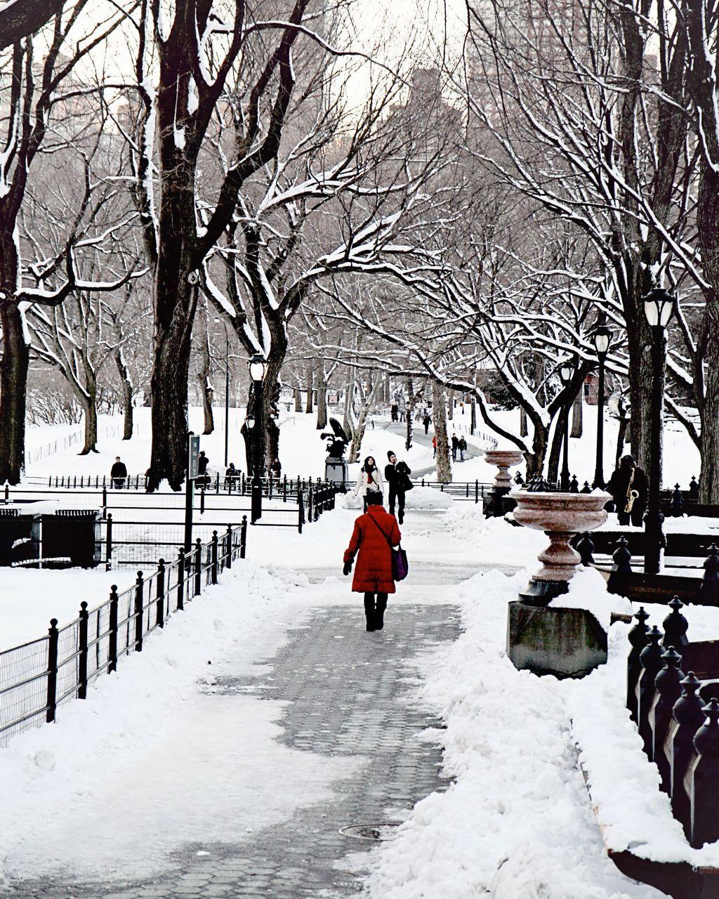 Best Christmas Decorations Long Island: New York City Photography