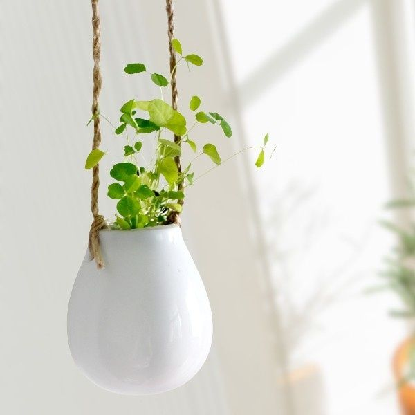 Perfect Mini Ceramic Hanging Pot Home Botanical Greens Trend