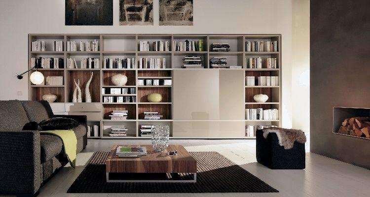 Contemporary Home Libraries Future