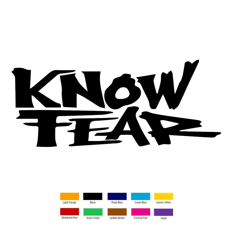Wholesale 10 pcs lot 16cm x 8cm know fear car sticker for truck window bumper