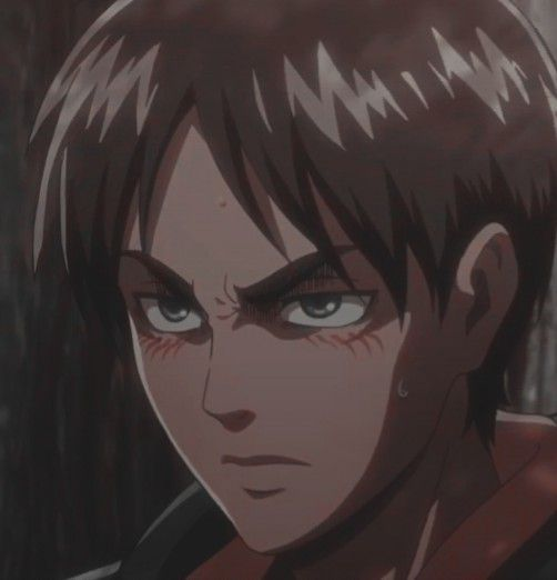 AnimeXReader [COMMANDES FERMÉES]