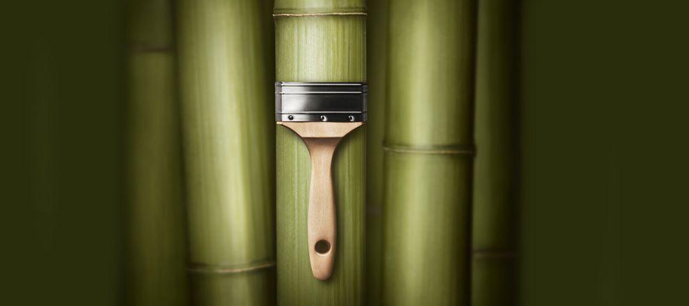 Trendfarbe Bamboo Schoner Wohnen Farbe Schoner Wohnen Farbe Schoner Wohnen Und Wohnen