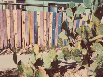 ceciliaalejandraphotography:Our Tucson 'hood.ceciliaalejandraphotography
