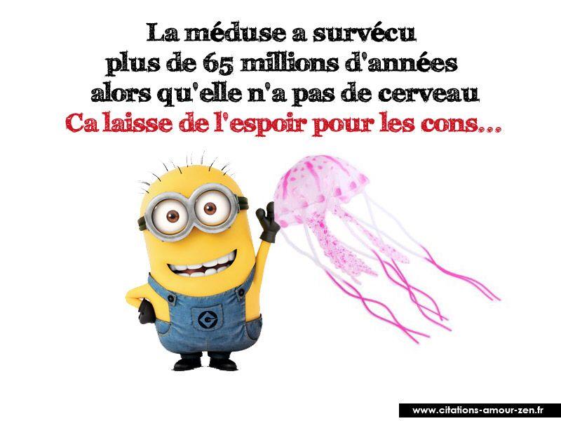 Image issue du site Web http://citations-amour-zen.fr/images/minions/citations-minions-9957.jpg ...