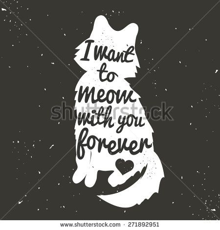 Cat Stock Quote Vintage Hand Drawn Romantic Postercute White Cat Silhouette And .