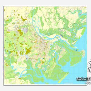 Vector map Savannah Georgia US printable vector street City Plan