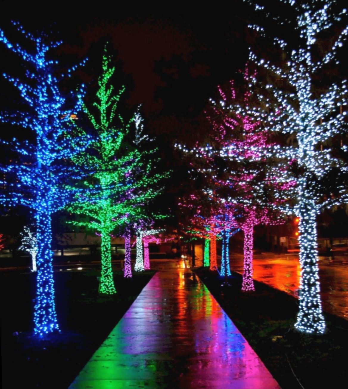 19 Christmas Lights Design Decorating Ideas In 2020 Hanging Christmas Lights Christmas House Lights Christmas Lights