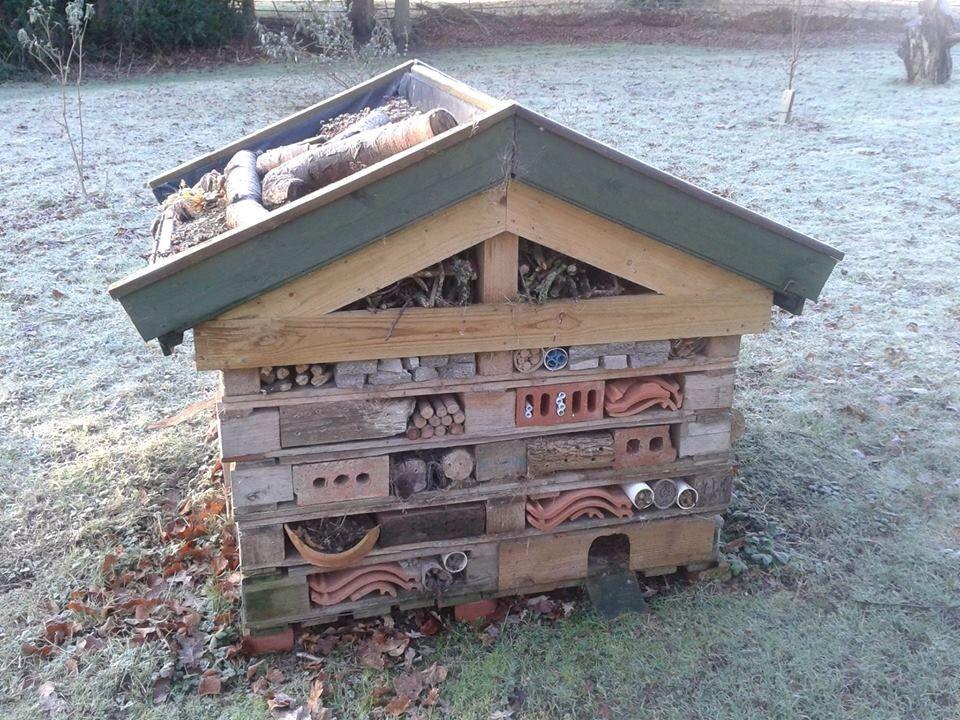 Beehabitat Com