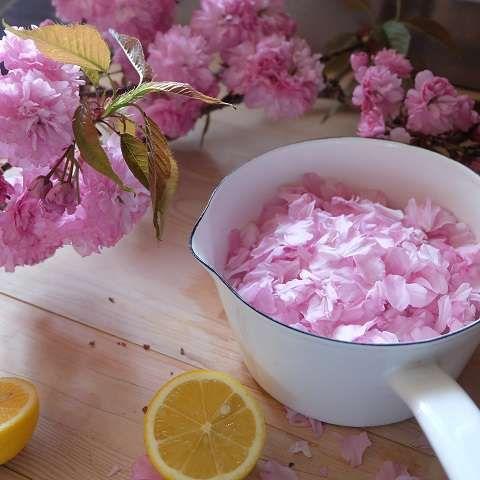 水とグラニュー糖、ペクチンを溶かした鍋に八重桜の花びらを入れる