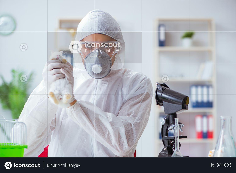 Premium Scientist Doing Animal Experiment In Lab With
