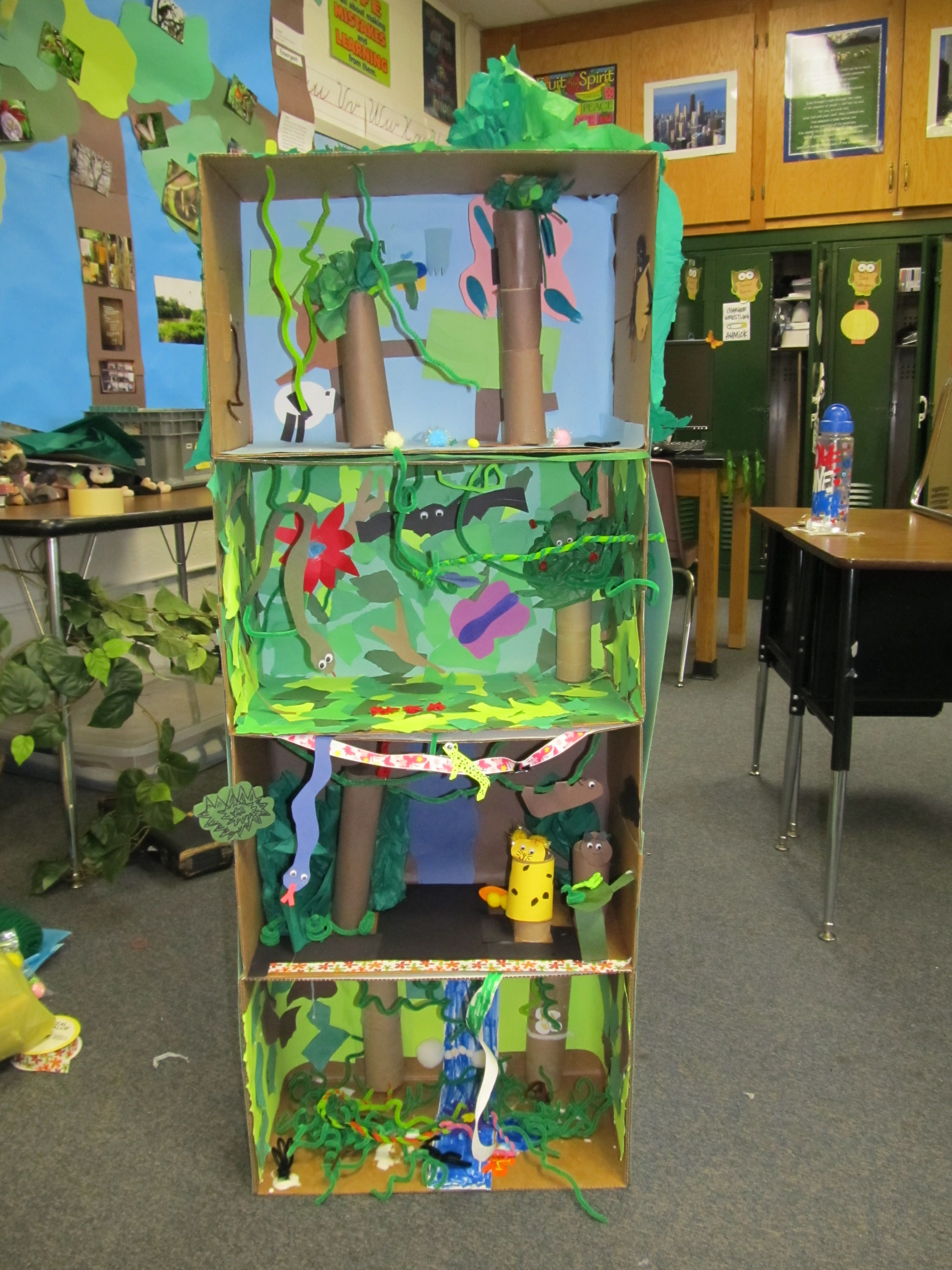 A Learning Affair*- Layers of the Rainforest 3-D Diorama ...