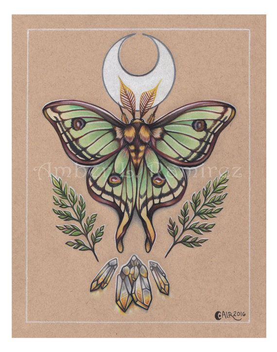 11 X 14 Inch Spanish Lunar Moth With Crescent Moon And Citrine