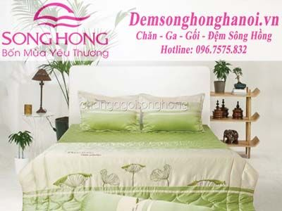 chan-ga-goi-song-hong-home