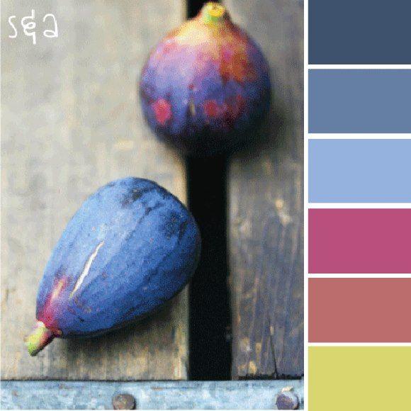 fig color scheme