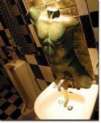 Resultado de imagen para excusados para baño