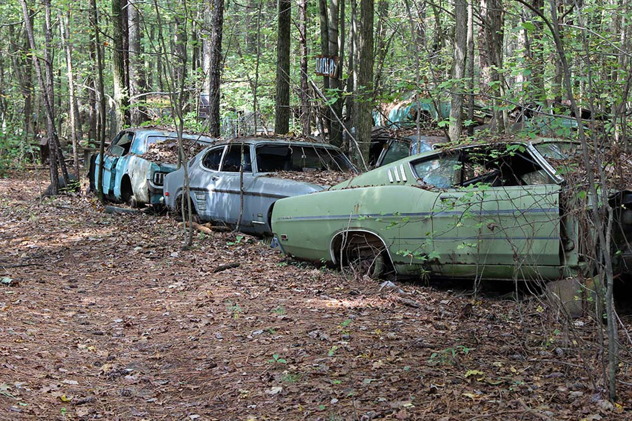 old-car-city-usa-abandoned-cars-239.jpg (2039×1360) | Ford USA ...