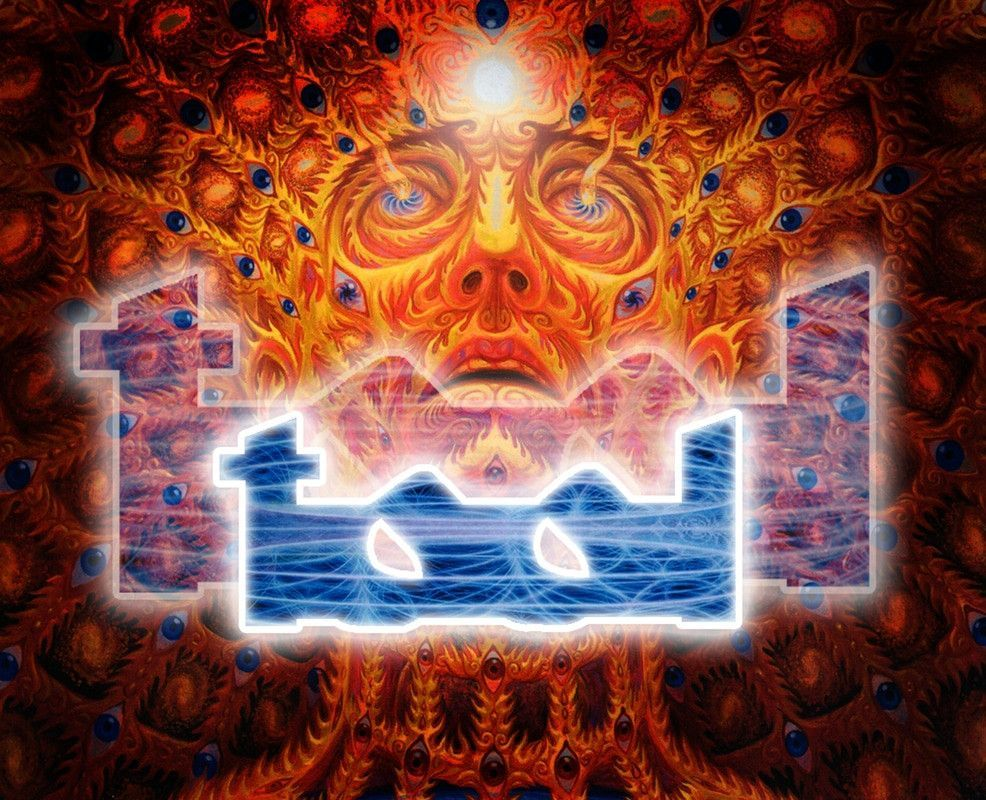 Tool Mouse Mat Tool band artwork, Tool band, Alex grey