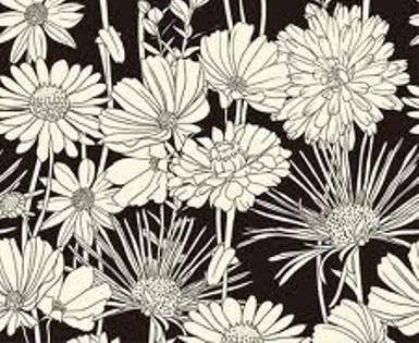 Clip Art Erflies And Flowers Images Of Black White Erfly Heart Wallpaper