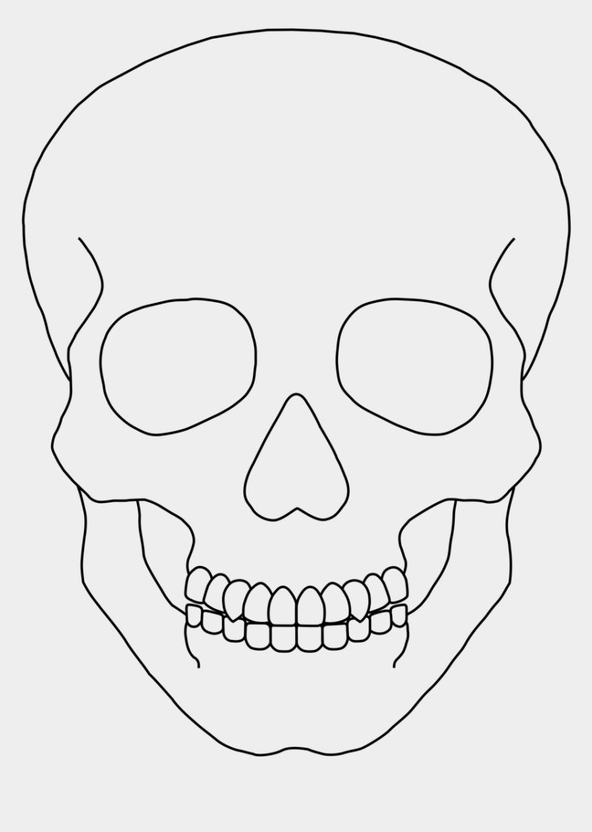 Skull Outline Clip Art Simple Human Skull Drawing Is Popular Png Clipart Cartoon Images Ex Human Skull Drawing Skull Drawing Sketches Simple Skull Drawing