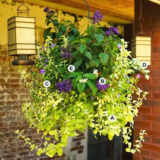 15 Stunning Container Vegetable Garden Design Ideas Tips: Hanging Basket For Full Sun