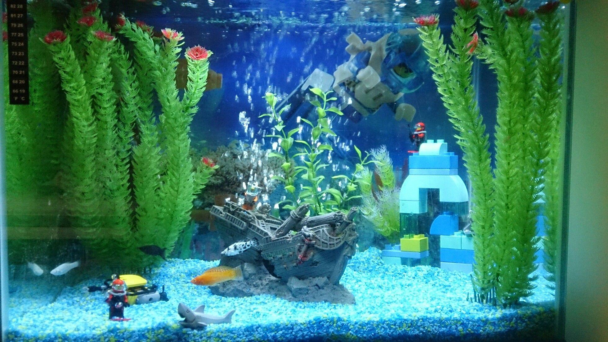 0e703bdd6eb5acfe1bb23b76cd9b7ff9 Incroyable De Aquarium Deco Des Idées