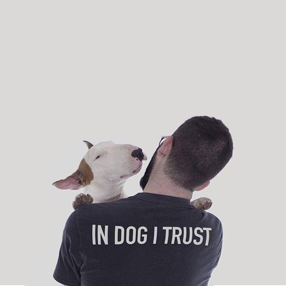 In dog I trust.