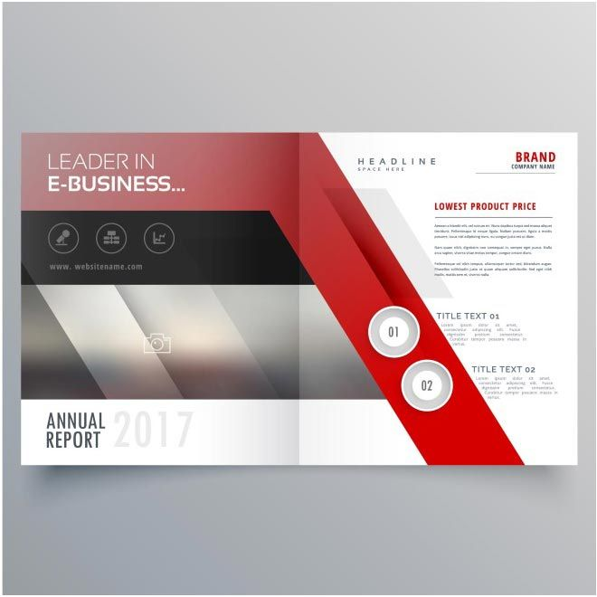 free vector e-business brochure http\/\/wwwcgvector\/free - advertisement brochure
