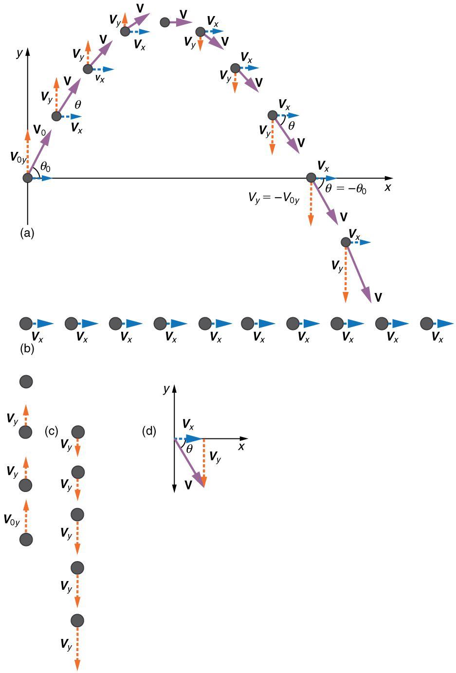 Resultat De Recherche D Images Pour Long Jump Take Off Physics And Mathematics Physics Facts Physics Concepts
