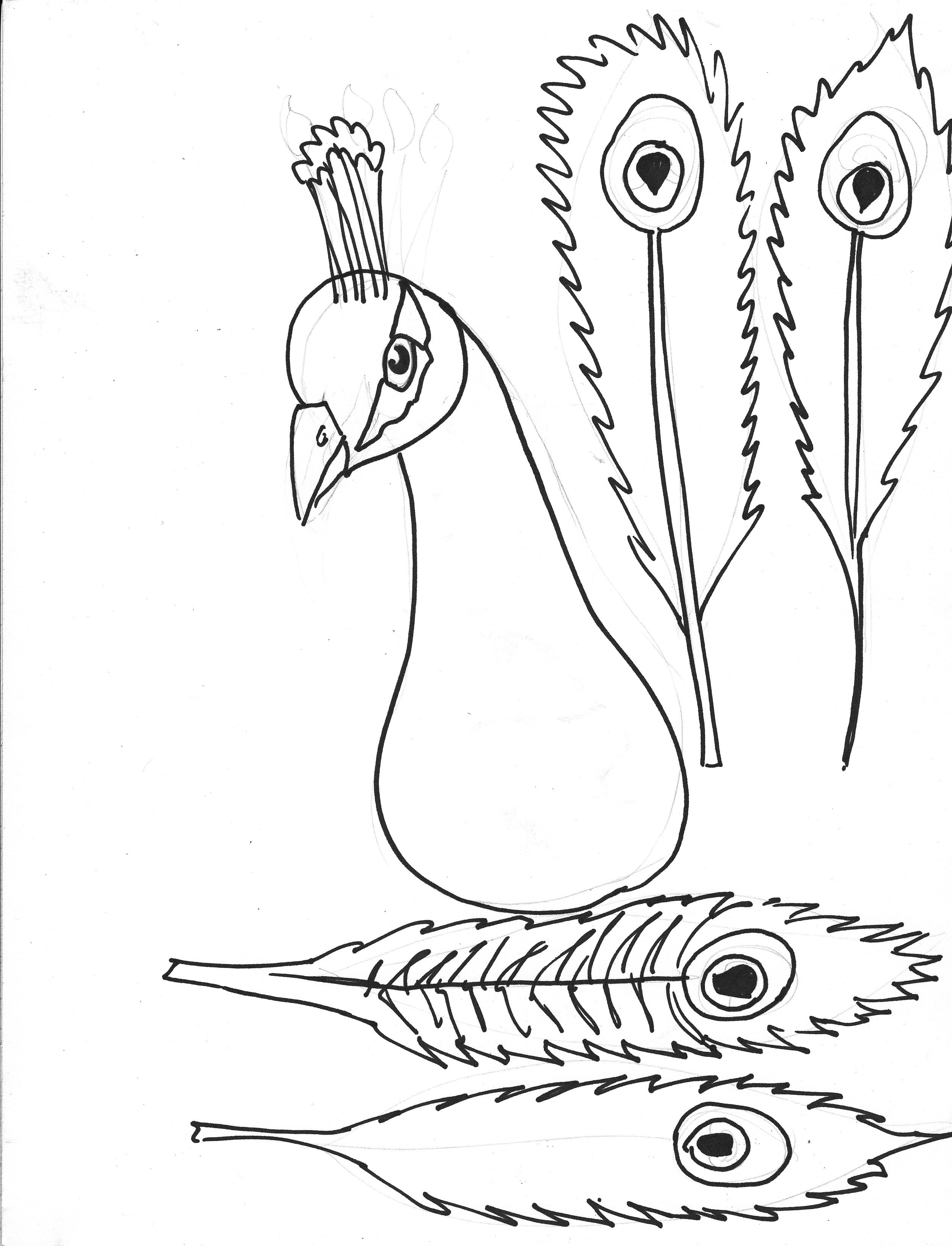 Peacock Coloring Pages For Kids Peacock Coloring Pages Peacock