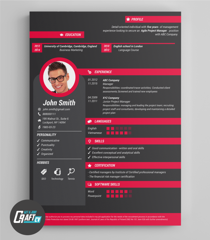Creative Cv Example Original Cv Design Resume Template Zana