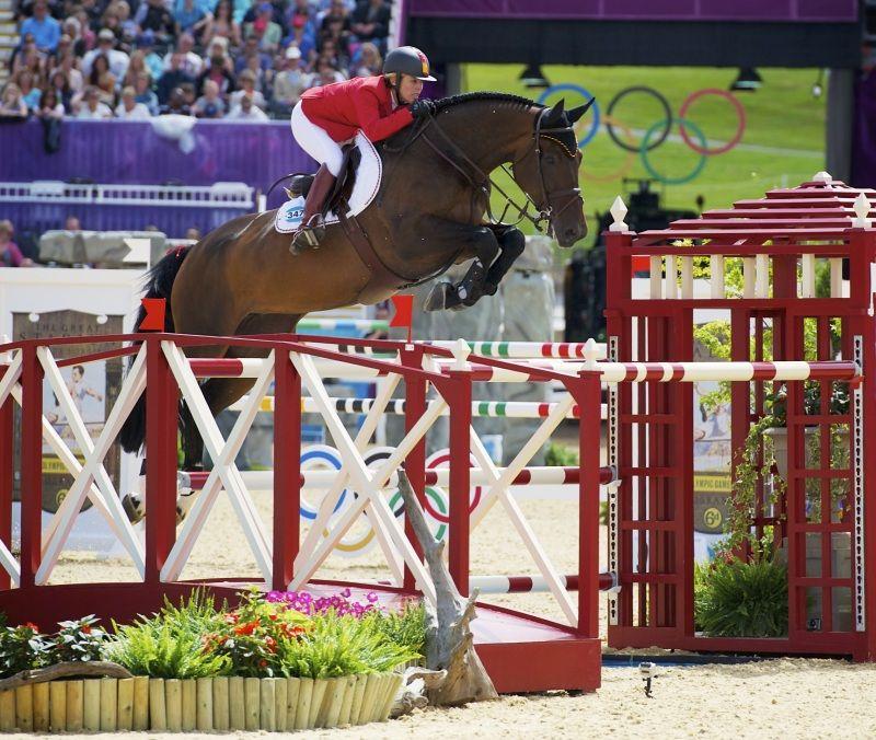 Jumping • Equestrian