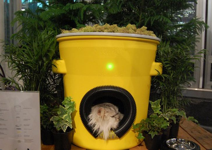Nyc S Homeless Kitties To Get Awesome Architect Designed Shelters Outdoor Cat House Feral Cat Shelter Feral Cat House