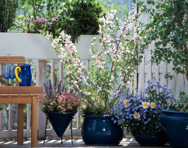 small backyard patio ideas photos | Spring Inspiration ...