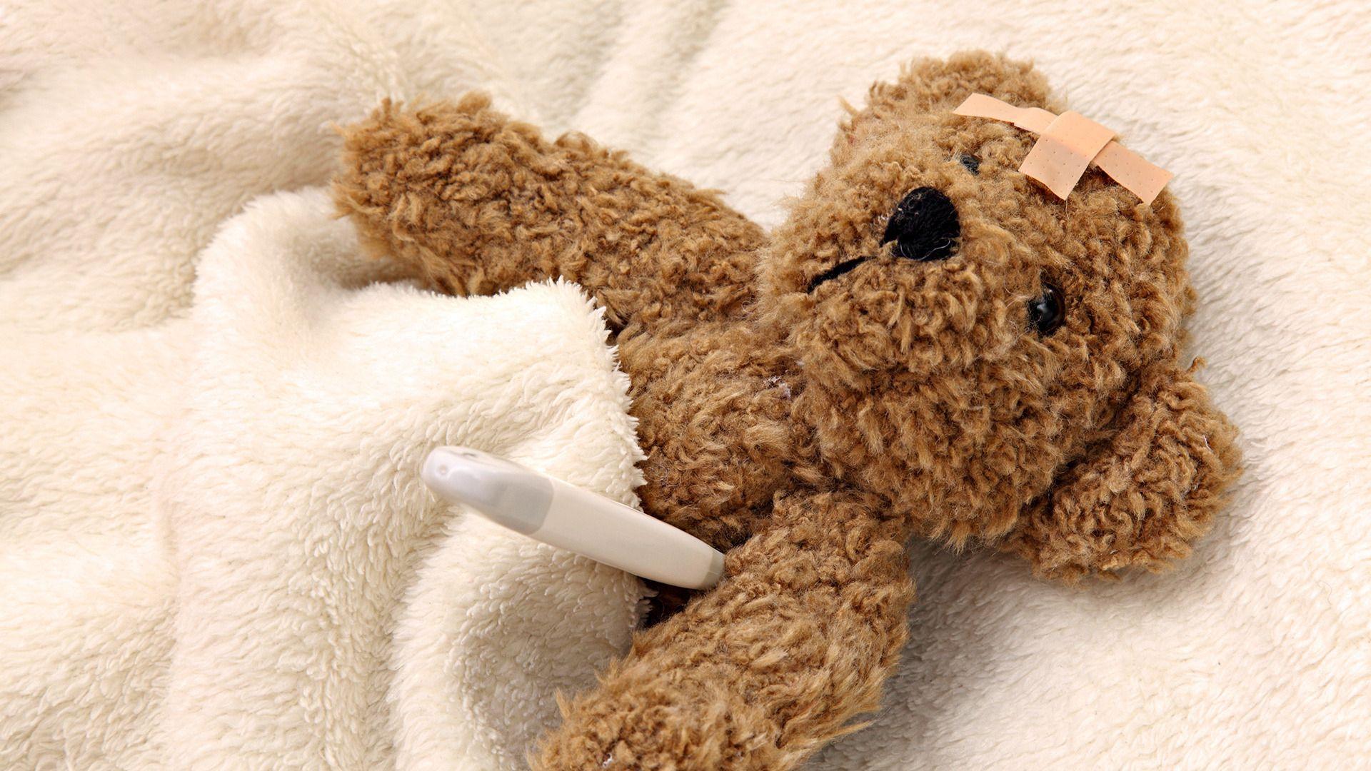 stuffed animals teddy bears fresh new hd wallpaper your popular hd wallpaper shared via slingpic